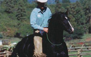 Doma natural de caballos y doma en libertad