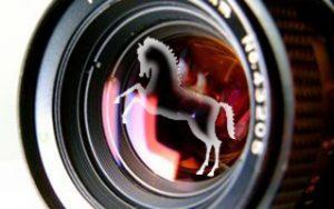 Trucos para tomar fotos de caballos: También una galería impresionante