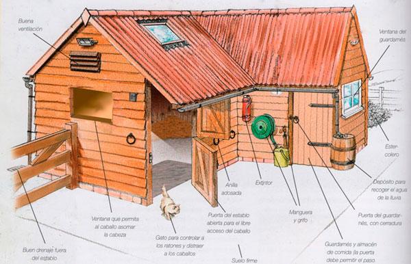 Boxes para caballos: Cómo contruir el establo ideal
