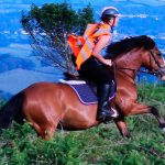 Cómo controlar un caballo brioso, que carga hacia adelante