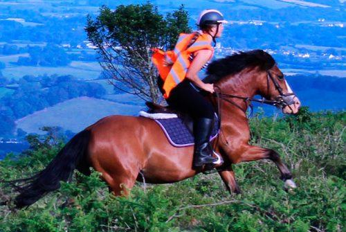 controlar un caballo
