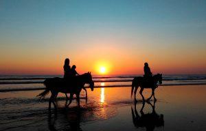 Cabalgata: Equipo necesario para una excursión a caballo