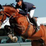 Salto Ecuestre: Cómo preparar un caballo de concurso (fase inicial en picadero)