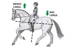¿Sabes qué significa un caballo en equilibrio?