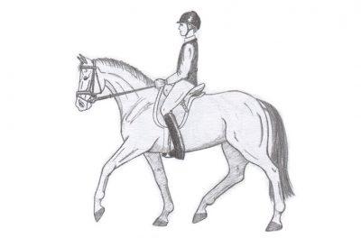 caballo en equilibrio