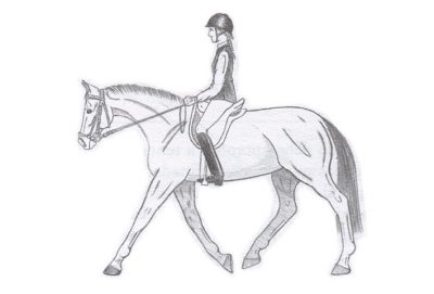 caballo sobre las espaldas