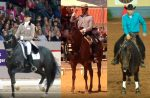 Doma de caballos: Qué es, tipos y ejercicios paso a paso