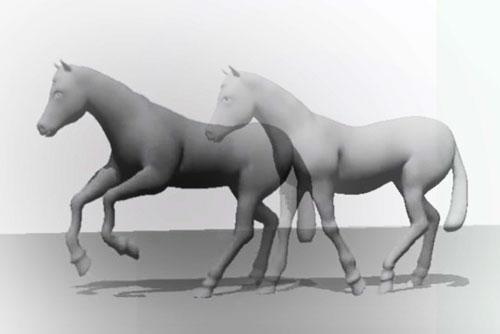 transiciones en equitación